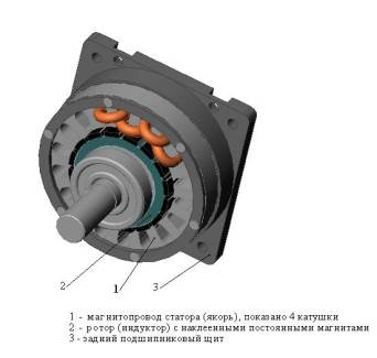 High-torque multi-pole motor